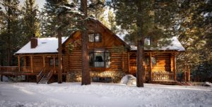 Log Home Preservation